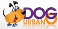 Dog Urbano